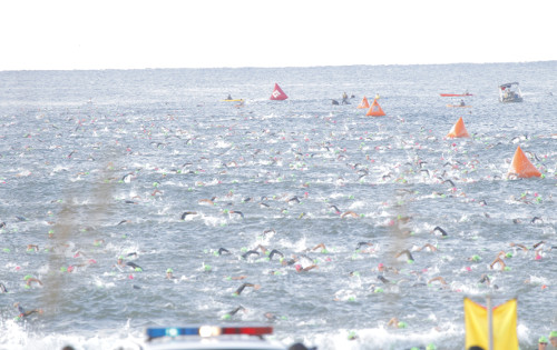 Florida 2013 Swim