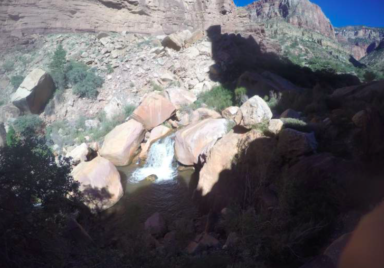 We ran alongside this stream for ~7 miles on the N. Kaibab trail.